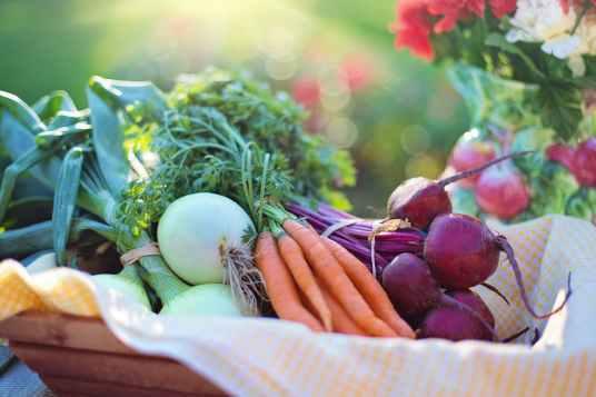 agriculture basket beets bokeh